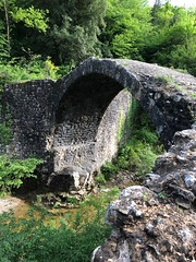 "Ponti della Pia (Herculeus.) Tags: landscape 5photosaday roadside arches ""riverpia"" river outdoors outdoor rosia tuscany italy ""pedestrianbridge"" outside shade water bridges ""naturalreserve"""