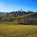 Ein Herbsttag im Murgtal bei Baiersbronn. thumbnail