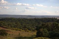 DSC_0042 1 (Proflázaro) Tags: brasil goiás valparaísodegoiás cerrado planaltocentral árvore árvoredocerrado paisagem paisagemdegoiás paisagemdobrasil horizonte céu nuvem entardecer naturezadegoiás naturezadobrasil natureza ecologia nikond3100