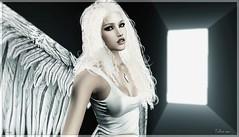 Follow me ... (Frexy Venus) Tags: secondlife sl blonde portrait angel