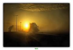 CLOSER TO THE SKY (régisa) Tags: sunrise swell sunshine road highway autoroute route soleil sun sky ciel belgique belgië adinkerke