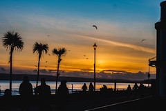 A Christmas Day Sunset (Sean McCammon) Tags: christmas sunset seaside sea shore beach shoreline holidays sun setting beautiful colors