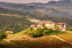 Langhe (riccardolipocelli) Tags: langhe piemonte monti mountains tree alberi wine vino case autunno