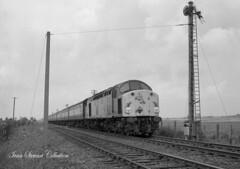 wainfleet 40082 skegness train 1982 (ACTON WELLS JUNCTION) Tags: wainfleet class 40 whistler skegness 1980s