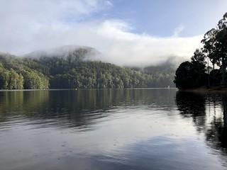 Lake Barrington reflections