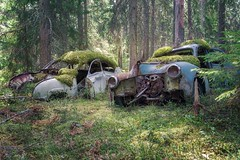 as one (Andy Schwetz ( andyschwetz,de)) Tags: abandoned cars oldtimer opel moss lostplaces forgotten classic classiccar wrack patina rusty rust rost vergessen decay verfall verlasseneorte verlasseneautos andyschwetz sonya7iii canon 2470l sony fotografmünchen