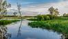 DSC_7680.jpg (David Hamments) Tags: nationalpark reflection cooinda sunrise kakadu yellowwaterscruise northernterritory flickrunitedaward flickrunitedwinner