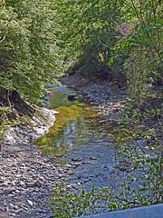 18050718744valtrebbia (coundown) Tags: gita tour statale stradastatale 45 ss45 valtrebbia trebbia natura boschi verde fiume