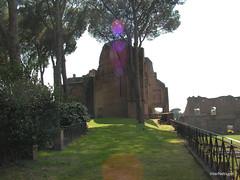 Пагорб Палатин, Рим, Італія InterNetri Italy 36