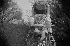 Crazy-Art, Morton Arboretum. 1 (EOS) (Mega-Magpie) Tags: canon eos 60d outdoors the morton arboretum art work guy face rock wood lisle il illinois usa america bw black white mono monochrome