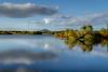 Vartry (Kevin_Barrett_) Tags: ireland wicklow water colours reflections reservoir trees landscape scenic scenery