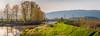 River Dyke (briantolin) Tags: mapleridge britishcolumbia dyke river creek stream water landscape path nature allouetteriver
