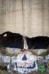 brooklyn skull (primemundo) Tags: streetart skull brooklyn rebar shadow shadows suitswon