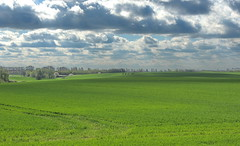 Landschaft im Mai (Wunderlich, Olga) Tags: rügen insel grün frühling landschaft wolken himmel feld getreidefeld bäume natur landschaftsaufnahme landschaftsfoto licht schatten