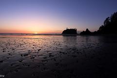 Ruby Beach (MikeWeinhold) Tags: rubybeach olympicnationalpark washington 6d 1740mm sunset beach seastack pebbles sky