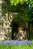 St Lawrence's Bluebells (Hector Patrick) Tags: yorkshire york churches bluebells botany colorful fujifilmxpro2 fujinonxf50f2rwr flowers stlawrence sunny blue fuji colours british dof norman fruhling printemps spring