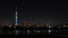 Tokyo Skytree (Raymond van der Zalm) Tags: tokyo skytree tower salmon creations