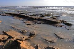 IMG_0244 22mm f13 1-125sec w (grilee3) Tags: marineland beach florida coquina rocks ocean atlanticshore