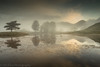 Kelly Clearing (tdove77) Tags: kelly hall tarn cumbria lake district south lakes coniston torver old man trees mist reflections sony a7ii 1635mm mirrorless lee filters uk