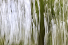 07 (Bright Sky Photography) Tags: blur green blue sigma7020028 canon 80d canon80d 10stop motion icm itentionalblur movement effect abstract