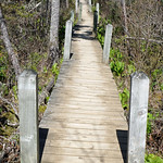 DSC00243 - Trail Back to Car thumbnail