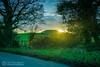 Winter sunset at Newgrange (mythicalireland) Tags: sunset setting sun winter midwinter newgrange monument meath grass trees roadside hedge fence clouds sky dusk evening landscape boyne valley