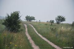 Волинське поле InterNetri Ukraine 702