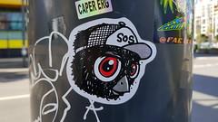 Mue Bon... (colourourcity) Tags: colourourcity originalcontent streetart streetartaustralia streetartnow graffiti melbourne burncity awesome nofilters streetartmelbourne graffitimelbourne laneways muebon slaps stickerart stickers