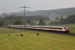 SBB Lokomotive Re 460 062 - 3 mit Taufname Ergolz ( Hersteller SLM Nr. 5539 - ABB - Inbetriebnahme 1993 - Elektrolokomotive Triebfahrzeug ) zwischen Gümligen und Rubigen im Kanton Bern der Schweiz