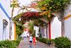 Puerto Mogan (M McBey) Tags: mogan puertomogan grancanaria canaryislands atlantic holiday flowers