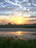 w 8 (BENPAB) Tags: stoney creek cherry cob sands humber east yorkshire southern holderness estuary inlet sunset