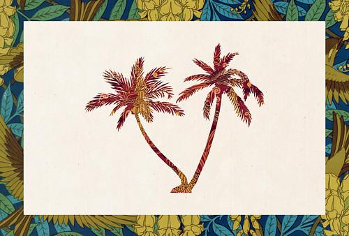 Carte postale // 10x15cm // Palmiers