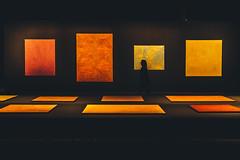 Superposition - Equilibrium & Engagement (Leighton Wallis) Tags: sony alpha a7r mirrorless ilce7r 55mm f18 emount sydney eveleigh carriageworks nsw newsouthwales australia art exhibition dark biennale 2018