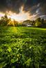 It's spring again (Toukensmash) Tags: spring green summer light evening sun sunset sunstar meadow field house hut leoben austria göss gös österreich styria steiermark cloudy dark clouds shadow pentax k1 rokinon 14mm april hill from above sky