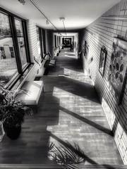 Shadows (Tina Jarnling) Tags: shadows skuggor svartvit blackandwhite bergendal