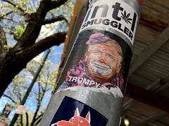 NYC 2018 (bella.m) Tags: graffiti streetart urbanart nyc usa manhattan newyork newyorkgraffiti art sticker trumpy donaldtrump trump clown