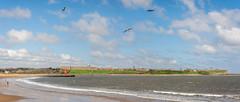 South Shields-4-Pano (stevefge) Tags: 2018 newcastle northeast southshields tyne uk coast reflectyourworld panorama landscape bay beach strand churches ruins castle priory people birds gulls sky