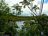 Glen Lake Fen 5/20/18 (dianecordell) Tags: glenlake queensburyny may nature landscapes water sky grees clouds reflections