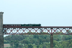 Flying Scotsman on Forth Bridge  35 (Bill Cumming) Tags: fife forthbridge riverforth steamtrain flyingscotsman
