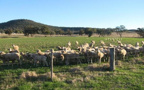 0 Sunview, Mandagery NSW 2870
