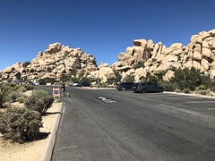 2018-04-27 GOPS Cottonwood Campout (119) (MadeIn1953) Tags: 2018 201804 20180427 greatoutdoorsgo go gops greatoutdoorspalmspringsgops california joshuatreenationalpark jtnp nationalpark nationalparkservice nps hiddenvalley