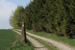 Frontiere @ Gouvy (Peter Van Gestel) Tags: grens paal luxemburg belgië belgique frontiere grense
