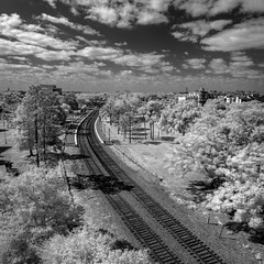 The track through Winter Park (Ed Rosack) Tags: usa landscape hires tracks ©edrosack panorama florida infrared building cloud buildingandarchitecture olympus sky winterpark train blackandwhite cityscape centralflorida bw cloudy ir