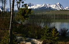Idaho Back Country (The VIKINGS are Coming!) Tags: idaho sawtooths stanley nakedbeauty elk coyote hiking bare wilderness trout fishing lodgepole pine mountains alpine