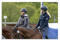 Chatsworth Horse trails 2018 (johnhjic) Tags: johnhjic nikon d850 chatsworth 2018 horse green blue people man woman fun horses ride riding trees woods black derbyshire uk england jumps jump fance eventing event threeday 3day 3 day action sport motion morning