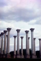 Capitol Columns, US Arboretum (//sarah) Tags: film minoltasrt100 arboretum dc columns sculpture sky moody