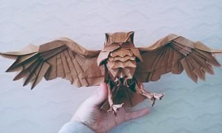 Blackiston's Fish Owl by Katsuta Kyohei