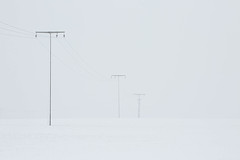 silence (IIIfbIII) Tags: silence ruhe ewigkeit white weis masten schnee eis snow bw blackandwhite mecklenburg vorpommern landscape landschaft zen minimal art fineart photografie grafik light licht feld