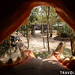 Phnom Tamao Wildlife Rescue Centre Playground