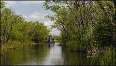 _SG_2018_04_0063_IMG_6723 (_SG_) Tags: usa us florida key west sunshine state united states america island city roundtrip everglades national park american alligator mile nine pond